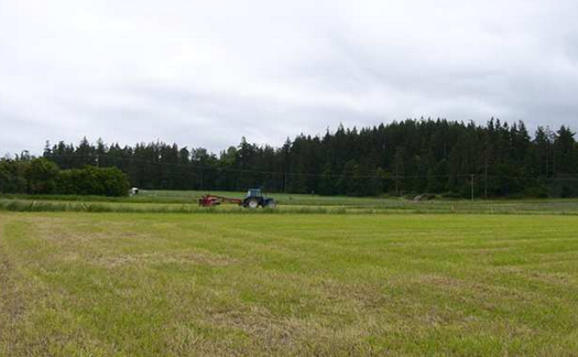 sequim farm land