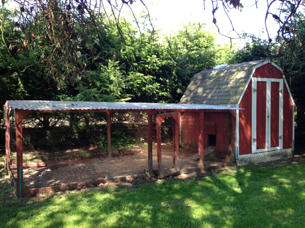 Sequim Chicken Coop